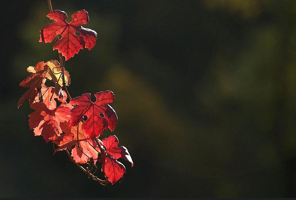 Oktober…